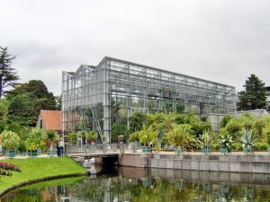 Leiden Hortus Botanicus Holland The Netherlands The Dutchman Travelagent Travel concierge DMC 03