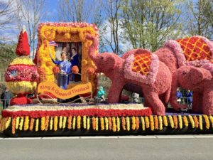 What's happening Flower Parade II Holland Netherlands DMC Travelagent Dutchman