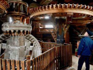Zaanse Schans Mill De Kat 02